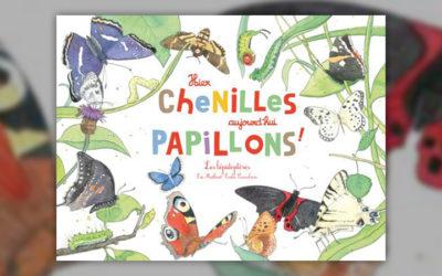 Eric Mathivet, Hier chenilles, aujourd'hui papillons!