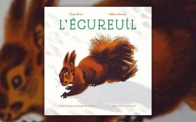 Hank Hvass, L'écureuil