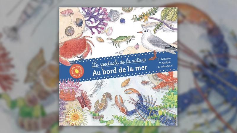 V. Aladjidi, C. Pellissier et E. Tchoukriel, Au bord de la mer