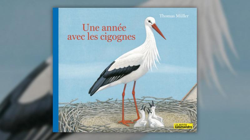 Thomas Müller, Une année avec les cigognes