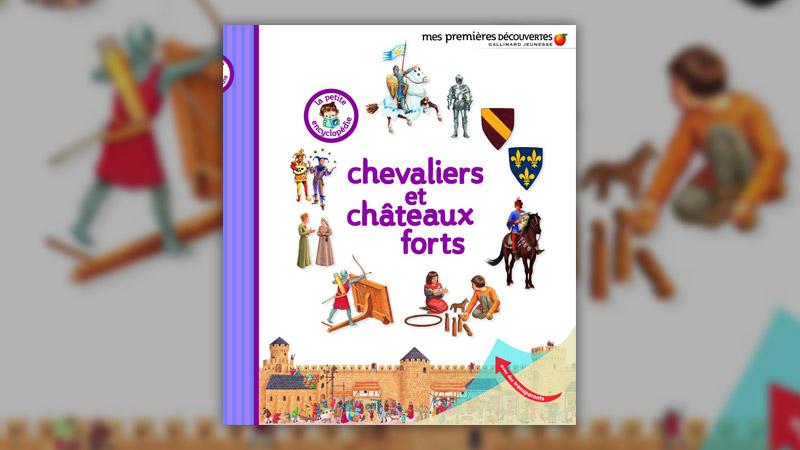Delphine Gravier-Badreddine, Chevaliers et châteaux forts