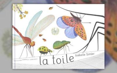 Isabelle Simler, La Toile