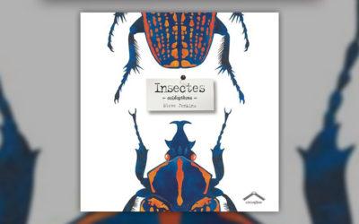 Steve Jenkins, Insectes – Coléoptères