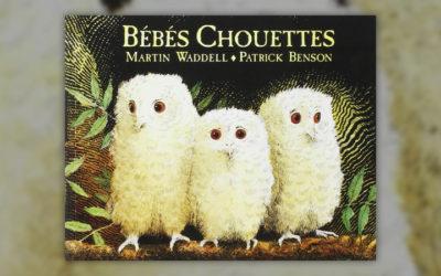 Martin Waddel, Bébés Chouettes