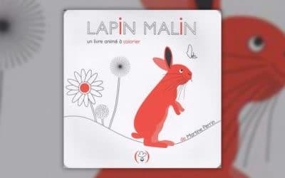 Martine Perrin, Lapin malin, un livre animé à colorier