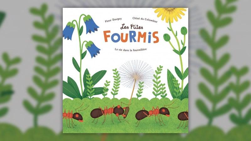 Fleur Daugey, Les P'tites fourmis – La vie dans la fourmilière