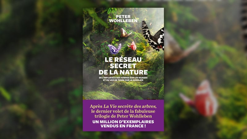 Peter Wohlleben, Le réseau secret de la nature