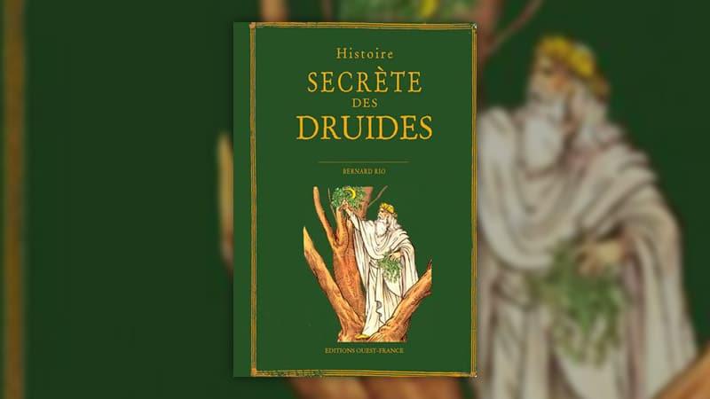 Bernard Rio, Histoire secrète des druides