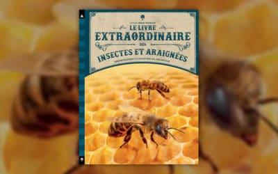 Barbara Taylor, Le Livre extraordinaire des insectes et araignées